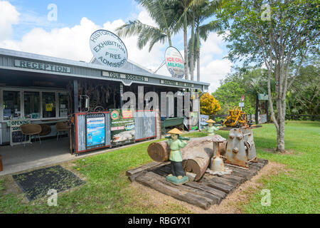 Historical Exhibition at Daintree and Riverview Lodge & Van Park, Daintree Village, Far North Queensland, FNQ, QLD, Australia - Stock Image