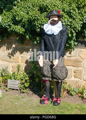 Marske North Yorkshire August 25th/ Like many Yorkshire villages Marske by the Sea has a weeklong Scarecrow Festival which started today 25th August,  many different organisations and social groups have made scarecrows an erected them around the village.  Parents and children can get a trail map to follow and view all the exhibits.  There is a prize draw at the end of the week.  Marske Allotments Association Sir Walter Raleigh Credit: Peter Jordan_NE/Alamy Live News - Stock Image