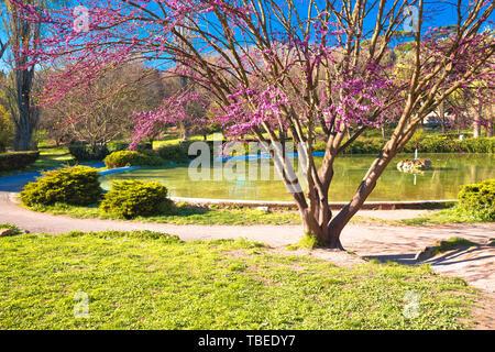 Fountain Rotonda di Borghese green park in Rome scenic view, capital of Italy - Stock Image