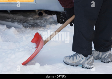 Person shovelling snow to clear the drive using a snow shovel after heavy snowfall on ground in winter. Wales UK Britain - Stock Image