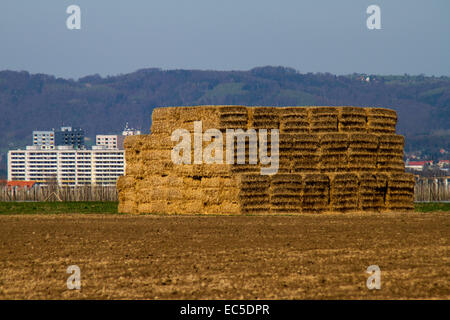 bales of straw on the outskirts of a city - Stock Image
