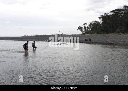 Hiker crossing river Osa Peninsula Costa Rica beach primary rain forest. Tropical Jungle tree - Stock Image