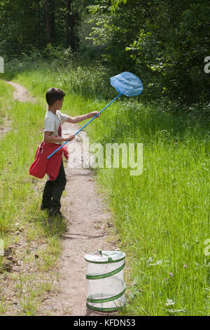 little boy on butterfly hunt near Chiddingfold, West Sussex - Stock Image