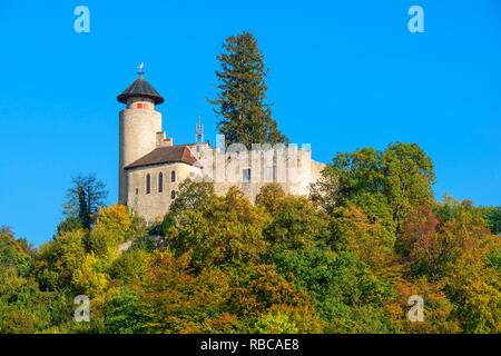 Birseck castle, Arlesheim, Basel-Country, Switzerland - Stock Image