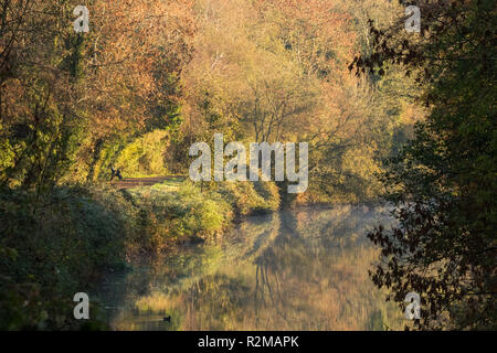 Early morning mist on the River Lagan,  as beautiful autumn colours are brightly lit by morning sunshine. Lagan towpath, Belfast, N.Ireland. - Stock Image