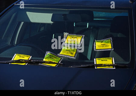 Windscreen of illegally parked car on double-yellow lines with six penalty charge notices. Parkside Road, Kendal, Cumbria, England, United Kingdom, Eu - Stock Image