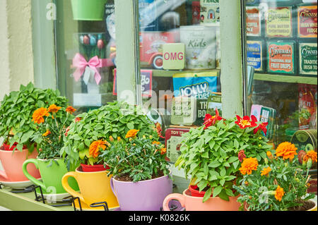 Colourful window box outside a shop in Kenmare, County Kerry, Ireland - Stock Image