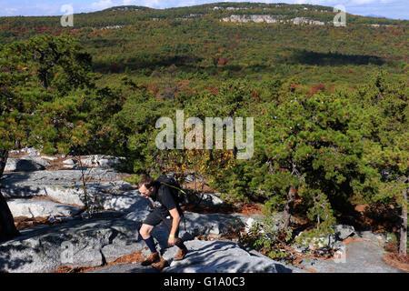 Hiker Tree and cliffs Shawangunk Mountains, The Gunks New York A - Stock Image