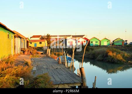 France, Charente Maritime, Oleron island, Le Chateau d'Oleron, the oyster port, oyster huts - Stock Image