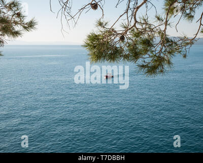 Blue sea and small boat near Mediterranean coast with pine trees - Stock Image