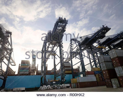 Low angle view of cranes at Port of Felixstowe, England - Stock Image