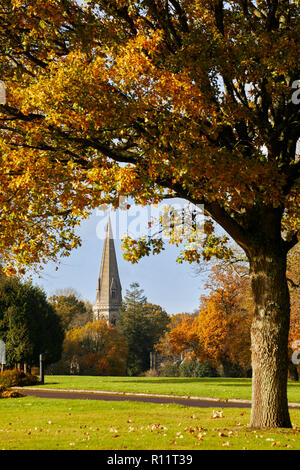 Autumnal Oak Tree on Denbies Estate with the spire of St Barnabas Church beyond. Ranmore Common, Surrey, England. - Stock Image