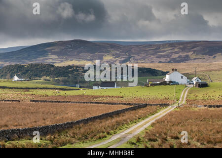 North Pennines Landscape, over to Cronkley Fell from Hanging Shaw, Teesdale, UK - Stock Image