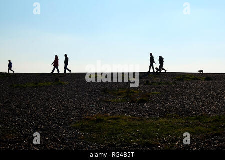 In the foreground is a pebble beach at the end of the beach are five unrecognizable people and two dogs walking, on the left is a little boy followed  - Stock Image