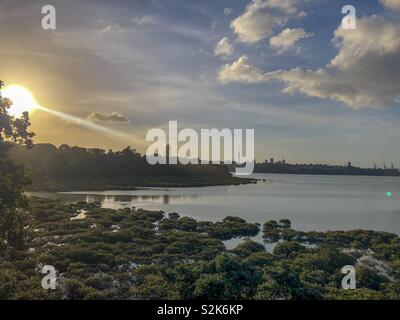 Lake, Auckland - Stock Image