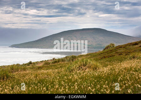 South Atlantic, Falklands, Carcass Island, sheltered bay at the McGill Settlement - Stock Image