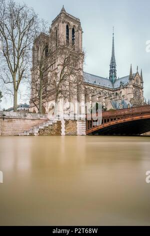 France, Paris, the banks of the Seine river listed as World Heritage by UNESCO, flood of the Seine river (january 2018), Notre Dame Cathedral on the Ile de la Cite - Stock Image