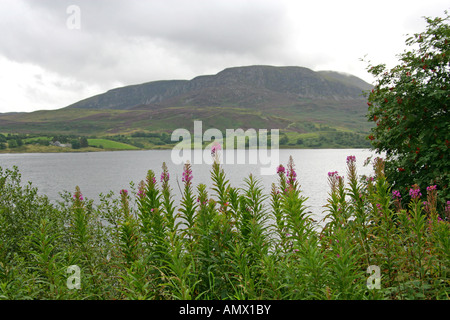 View Over Lake Bala, North Wales - Stock Image