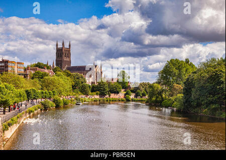 Worcester Cathedral and the River Severn, Worcester, Worcestershire, England - Stock Image