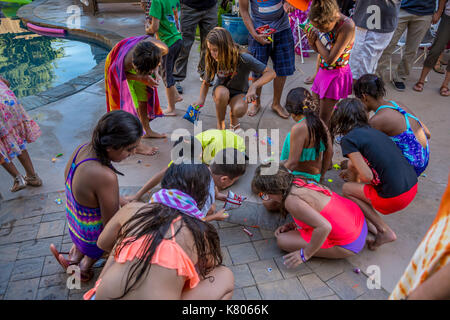 children collecting pinata candy, pinata candies, pinata sweets, pinata toys, Castro Valley, Alameda County, California, United States - Stock Image