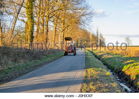 An elderly, bearded farmer drives his bright red scoop loader tractor on a rural road in mid-winter, Lower Saxony, - Stock Image