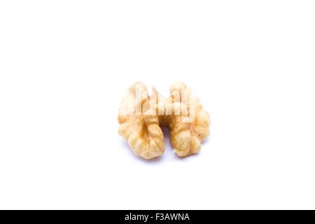 Walnut isolated on white background. - Stock Image