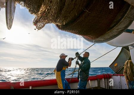 France, Herault, Grau d'Agde boat the Mediterranee Francis Disanto business, trawl fisheries off the coast between Agde and Port la Nouvelle - Stock Image