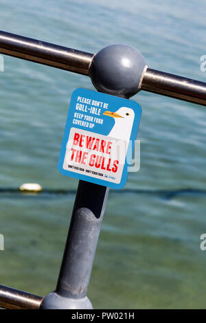 A sign on St. Ives Harbour saying 'beware the gulls', St. Ives, Cornwall, England, UK - Stock Image