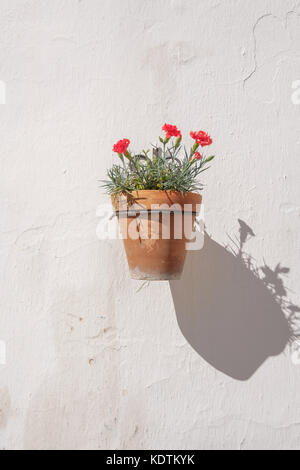 Traditional Spanish wall mounted flower pot. - Stock Image