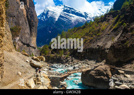 Landscape Fast Mountains River Hiking Himalayas.Beautiful View Wood Bridge End Summer Season Background.Green Threes - Stock Image