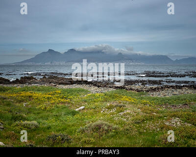 Cape Town, with Table Mountain covered in cloud, from Robben Island in Table Bay, South Africa - Stock Image