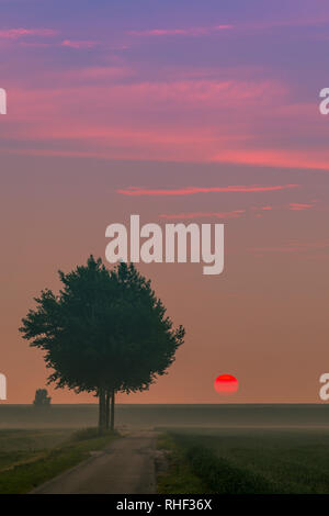 Sunrise in the Johannes Kerkhovenpolder in the northern part in the province of Groningen, Netherlands. - Stock Image