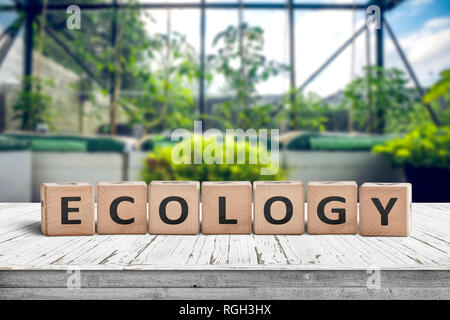 Ecology sign on a wooden table in a greenery with fresh green plants - Stock Image