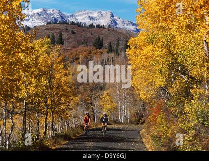 Larry W Peterson Neil Kodner peddling carbon fiber road bikes on Alpine Loop slopes Mount Timpanogos Uinta National - Stock Image
