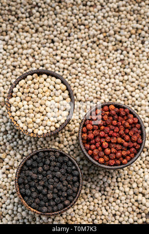 Organic kampot white red and black pepper corns in natural rustic style traditional wood bowls in cambodia on white peppercorn background - Stock Image