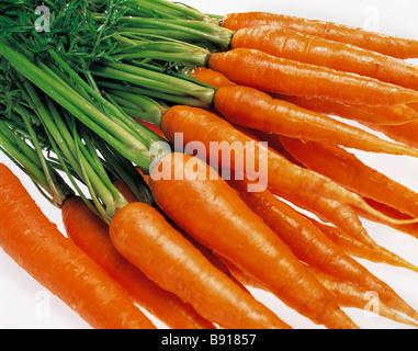 Carrots - Stock Image