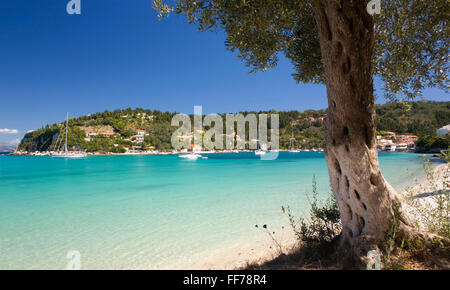 Lakka, Paxos, Ionian Islands, Greece. View across the clear turquoise waters of Lakka Bay. - Stock Image