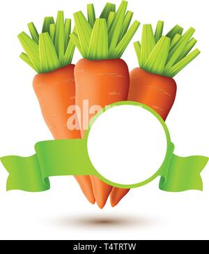 three carrots on brown background - Stock Image