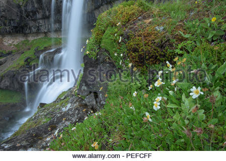 A waterfall near Vatnajokull. - Stock Image