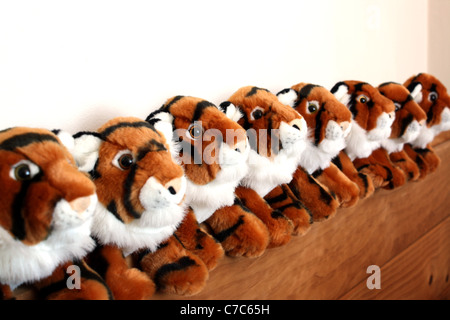 Eight stuffed tiger toys lined up in a row. - Stock Image