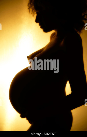 Silhouette of a nude pregnant woman's profile - Stock Image