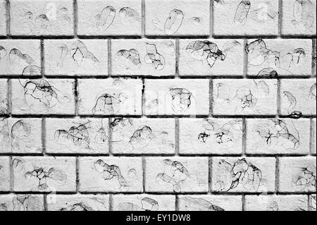Part of a white brick wall with damage, possibly by bullets - Stock Image