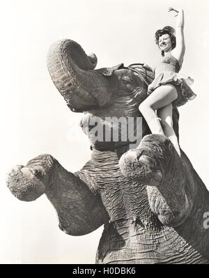 Circus performer posing on elephant - Stock Image