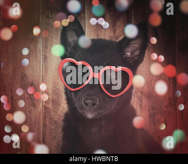 A cute black dog with red heart sunglasses is on a wood background with colorful sparkles around the pet for a party - Stock Image