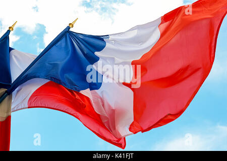 French Flags - Stock Image