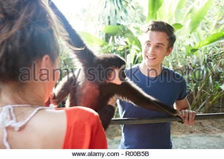 Young couple with monkey - Stock Image
