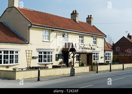 The Melbourne Arms, in the village of Melbourne, East Yorkshire, England UK - Stock Image