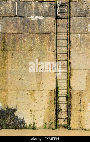 Al ladder at Smeatons Pier, St Ives, Cornwall, England, UK at low tide. - Stock Image