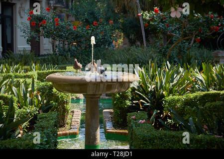 Gardens of the catedral of Málaga (Catedral de La Encarnación). Andalusia, Spain. - Stock Image