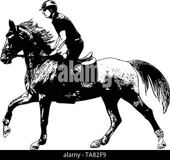 young horseman riding elegant horse sketch illustration - vector - Stock Image